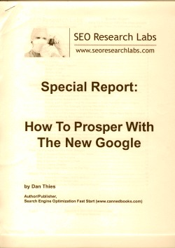 How to prosper with the new Google