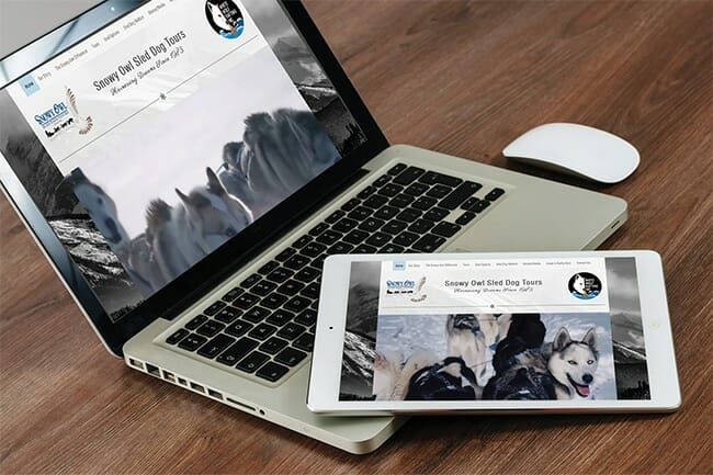 Snowy Owl Tours Website displayed on desktop and tablet