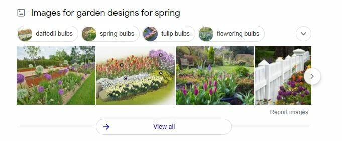 google serp images results