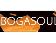 ibogoasoul-logo